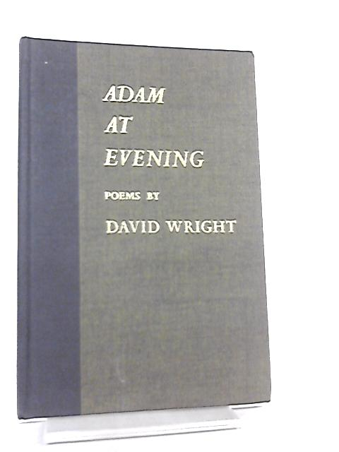 Adam at Evening by David Wright
