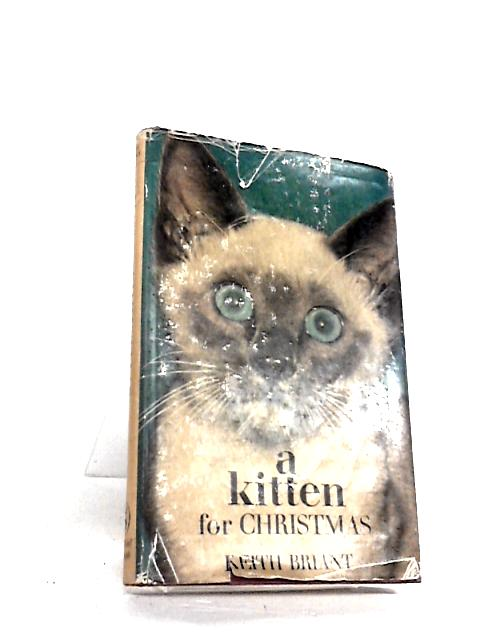 A kitten for Christmas by Briant, Keith
