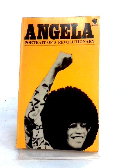 Angela Davis: Portrait of a Revolutionary by The Professor
