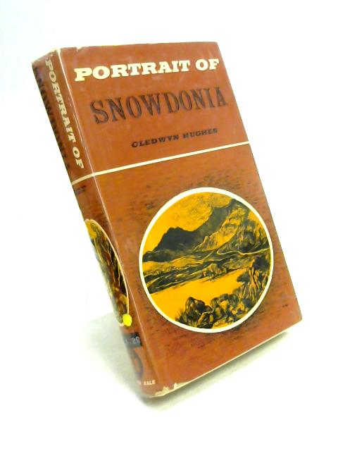 Portrait of Snowdonia by Cledwyn Hughes
