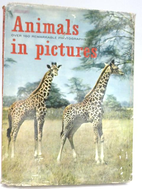 Animals In Pictures by Frantisek Vopat & Julius Komarek