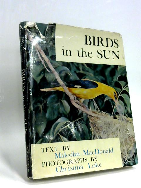 Birds in the sun by Malcolm MacDonald