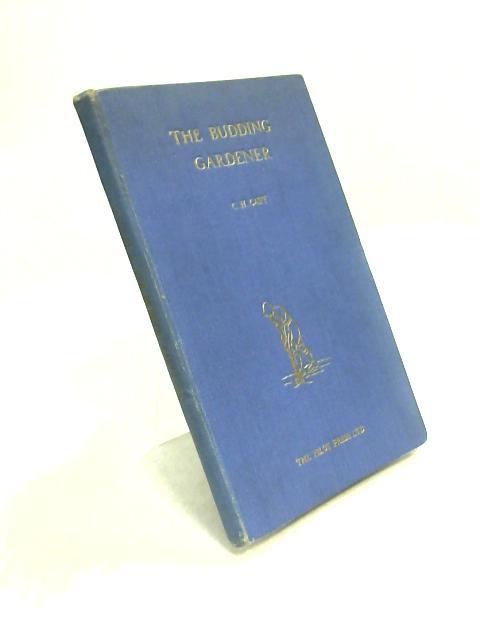 The Budding Gardener By C.H. Catt