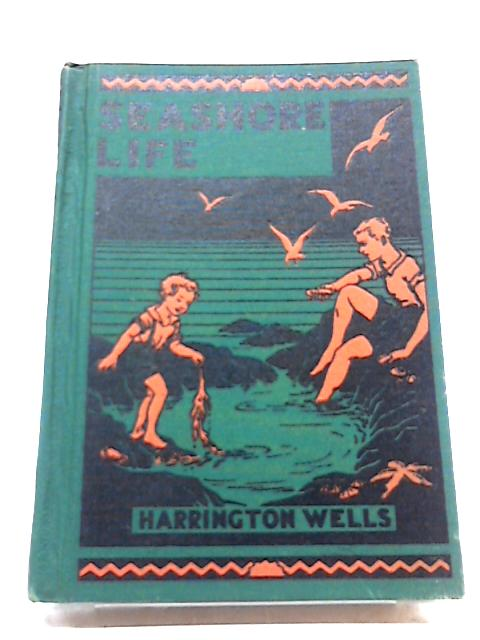 Seashore Life By Harrington Wells, MA