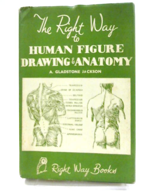 Human Figure Drawing and Anatomy by Jackson, A.Gladstone