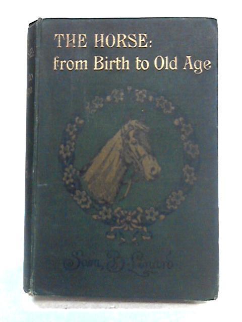 My Horse; My Love by S. Buckman Linard