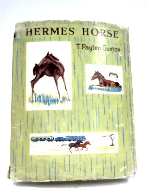 Hermes Horse by T. Payten Gunton
