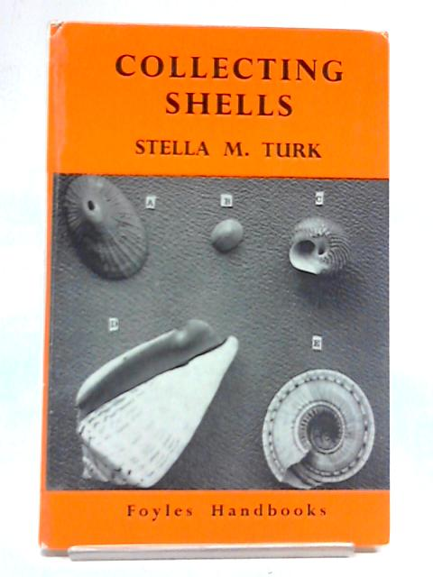 Shell Collecting by Stella M. Turk