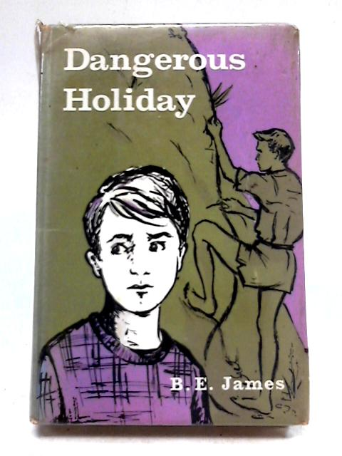 Dangerous Holiday by B. E. James