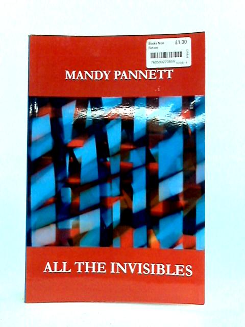 All the Invisibles by Mandy Pannett