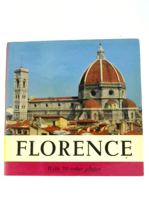 Florence by Del Turco, Lorenzo