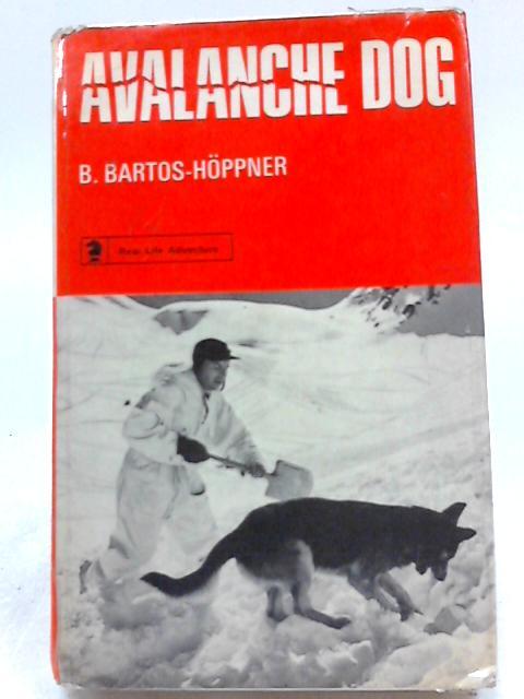 Avalanche Dog By B. Bartos-Hoppner