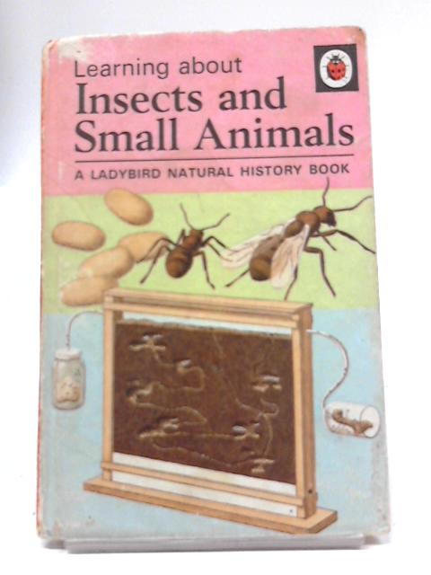 Insects And Small Animals (Natural History) by Romola Showell