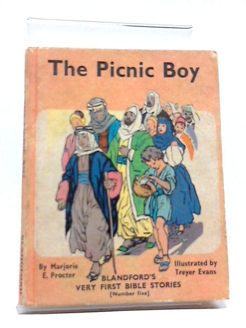 Picnic Boy by Marjorie Procter