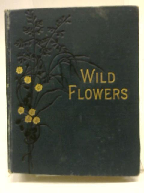 Wild Flowers Vol II By Anne Pratt