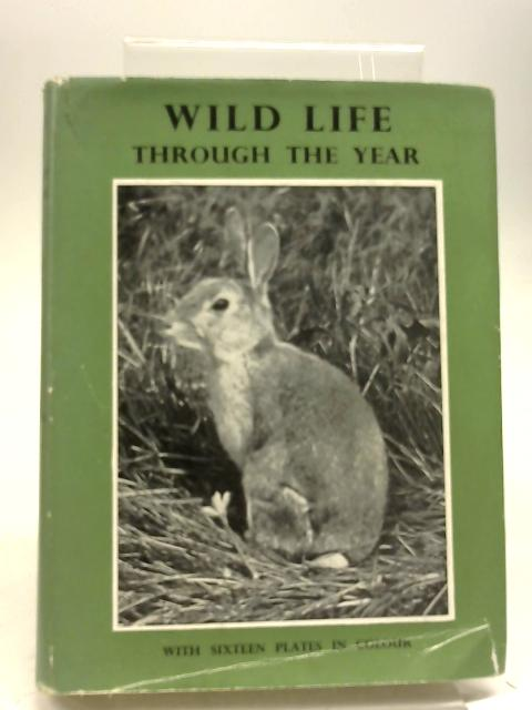 Wild Life Through The Year by Richard Morse