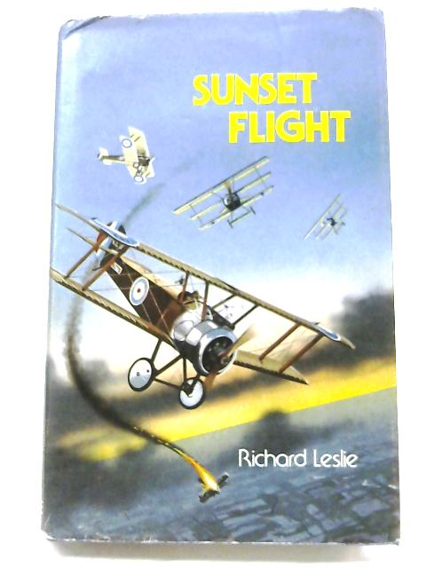 Sunset Flight By Richard Leslie