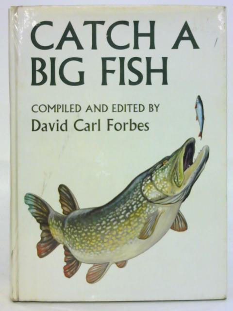 Catch A Big Fish by David Carl Forbes