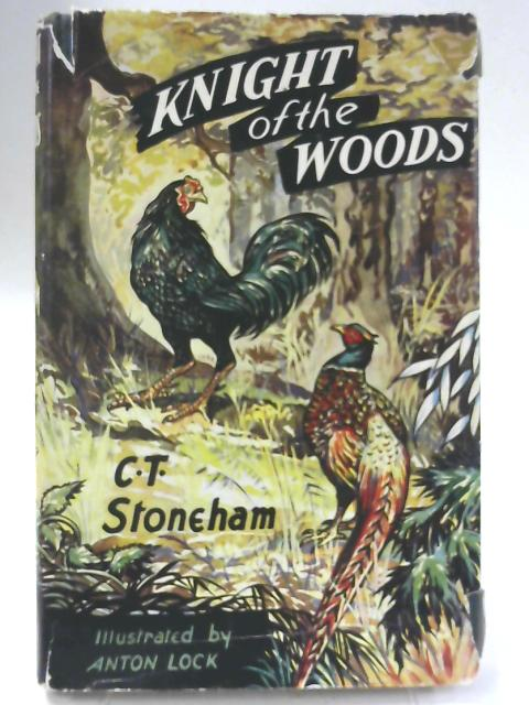 Knight of the Woods By Charles Thurley Stoneham