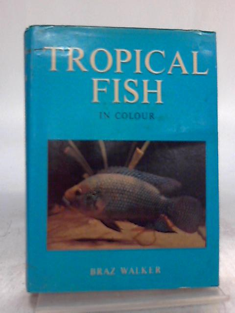 Tropical Fish In Colour By Braz Walker