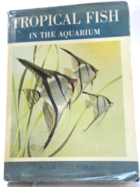 Tropical Fish in the Aquarium By Jacobus Marinus Lodewijks