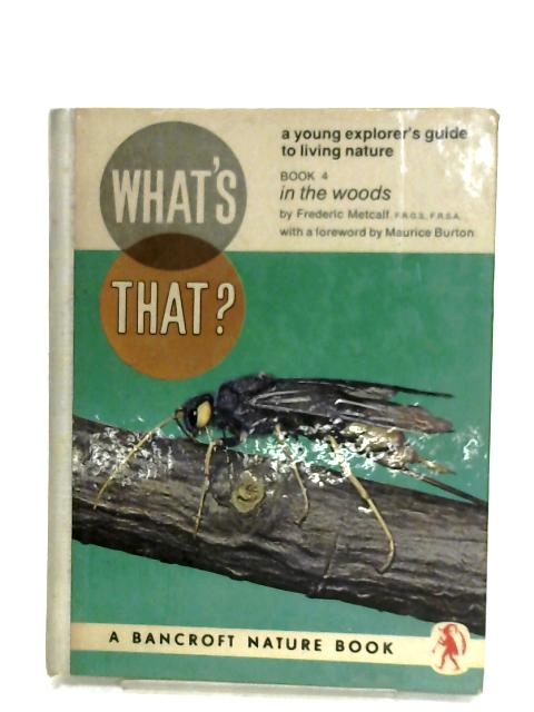 What's That?: In The Woods By Frederic Metcalf