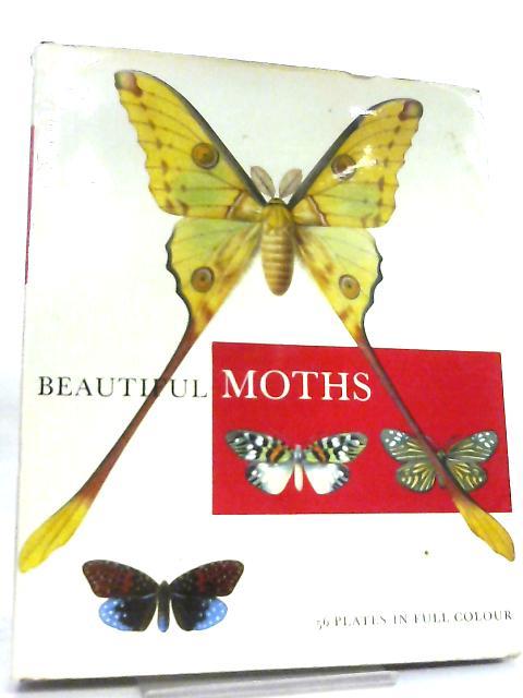Beautiful Moths by Josef Moucha