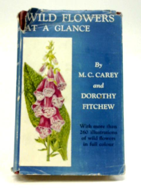 Wild Flowers At A Glance By Mabel Colebrooke Carey