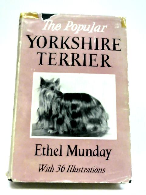 The Popular Yorkshire Terrier By Ethel Munday