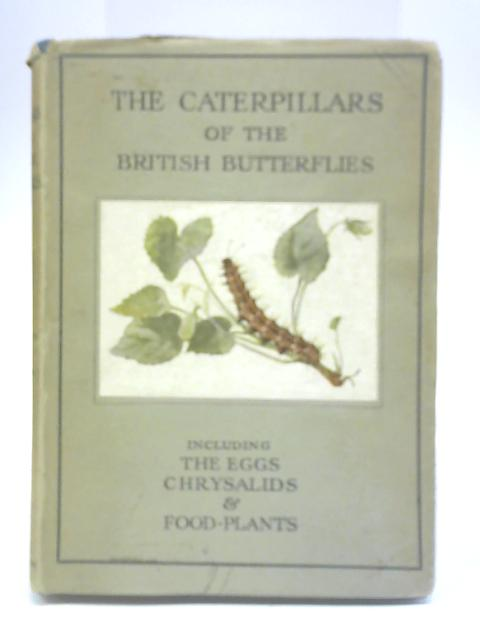The Caterpillars of the British Butterflies By W J Stokoe