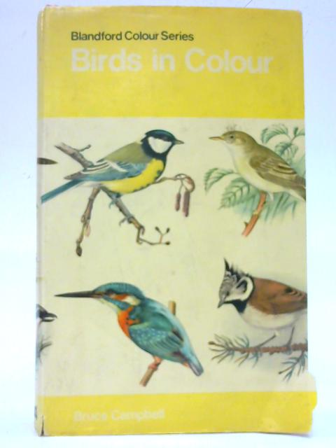 Birds in Colour (Blandford Colour Series) By Bruce Campbell