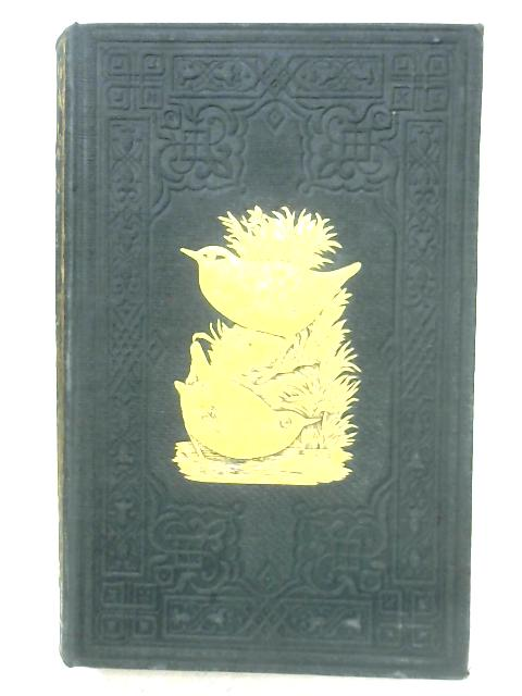 A History Of British Birds: Vol. III By F. O. Morris
