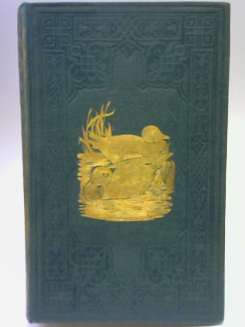 A History of British Birds Vol V By Rev F O Morris