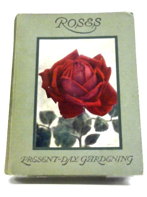 Roses By H R Darlington