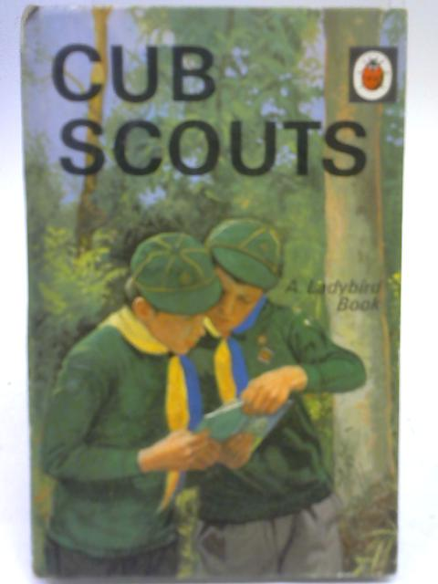 Cub scouts by David Harwood