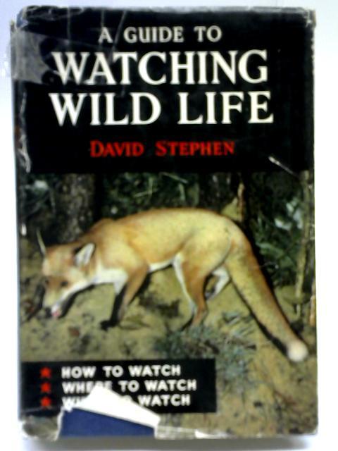 Watching Wild Life By David Stephen