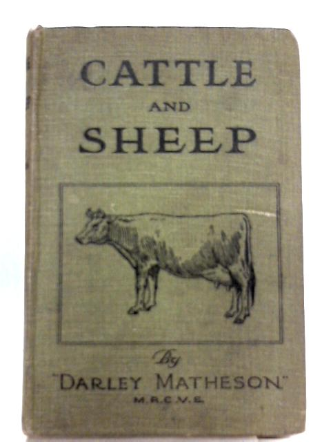 Cattle and Sheep By Darley Matheson