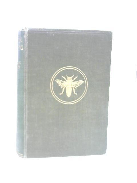 Practical Beekeeping by Arthur M Sturges