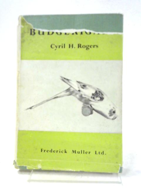 Budgerigars By Cyril H. Rogers