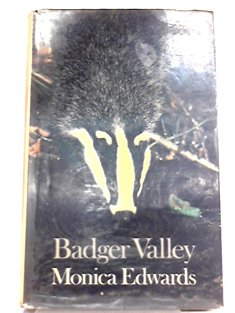 Badger Valley By Monica Edwards