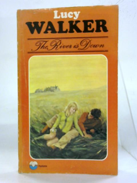 The River is Down by Lucy Walker