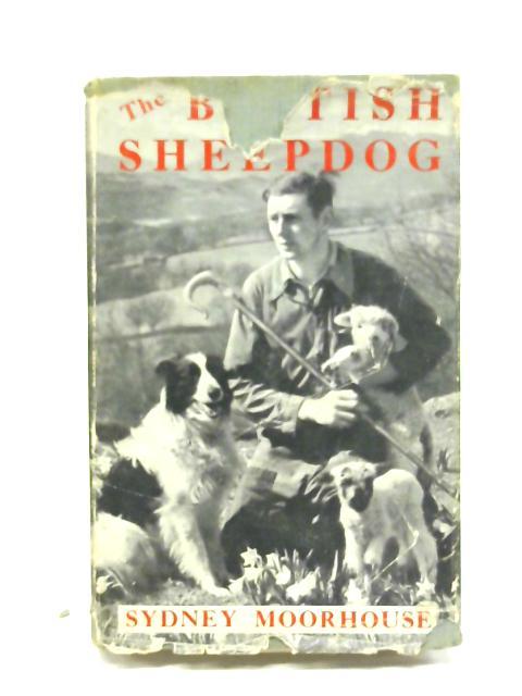 The British sheepdog by Sydney Moorhouse