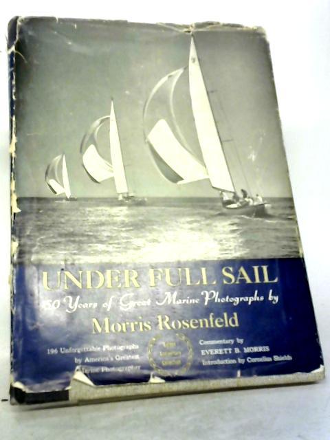 Under Full Sail By Morris Rosenfeld