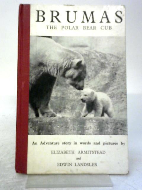 Brumas, the Polar Bear Cub By Elizabeth Armitstead