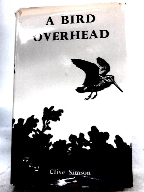 A Bird Overhead By Clive Simson