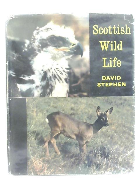 Scottish Wild Life By David Stephen