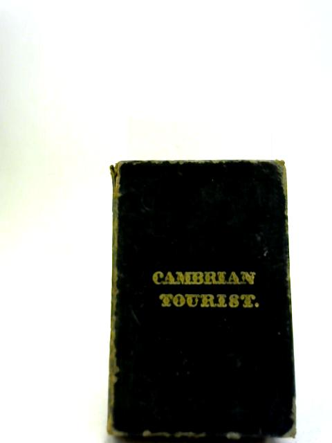 The Cambrian Tourist By Unstated