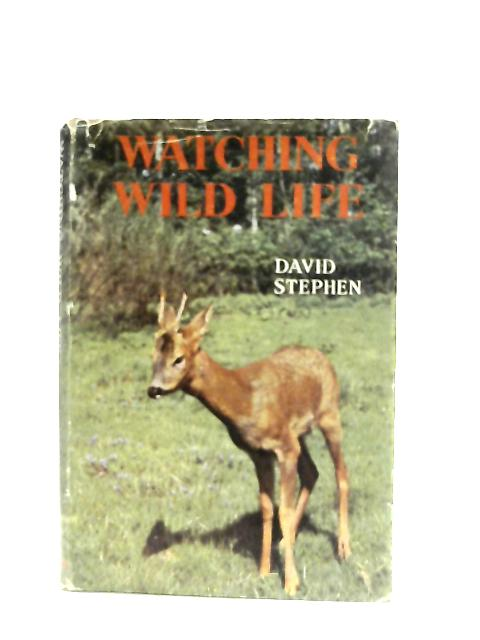 Watching Wild Life By David Stephen