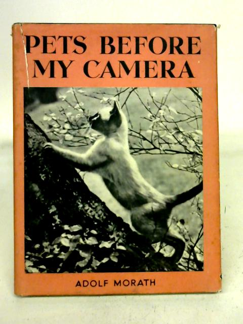 Pets Before My Camera By Adolf Morath