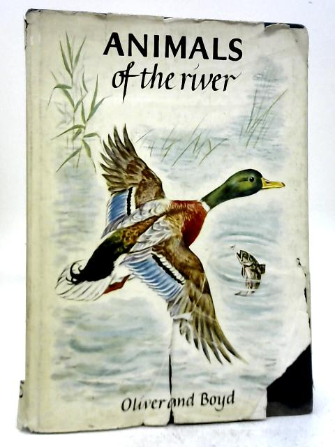 Animals of The River By Marcelle Verite